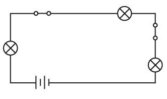 What does the diagram show? A.one battery, two light bulbs, and ...