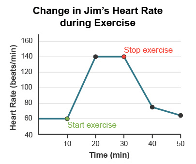Jims Heart Rate Was Monitored During Periods Of Exercise And