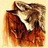 TheCrimsonFox