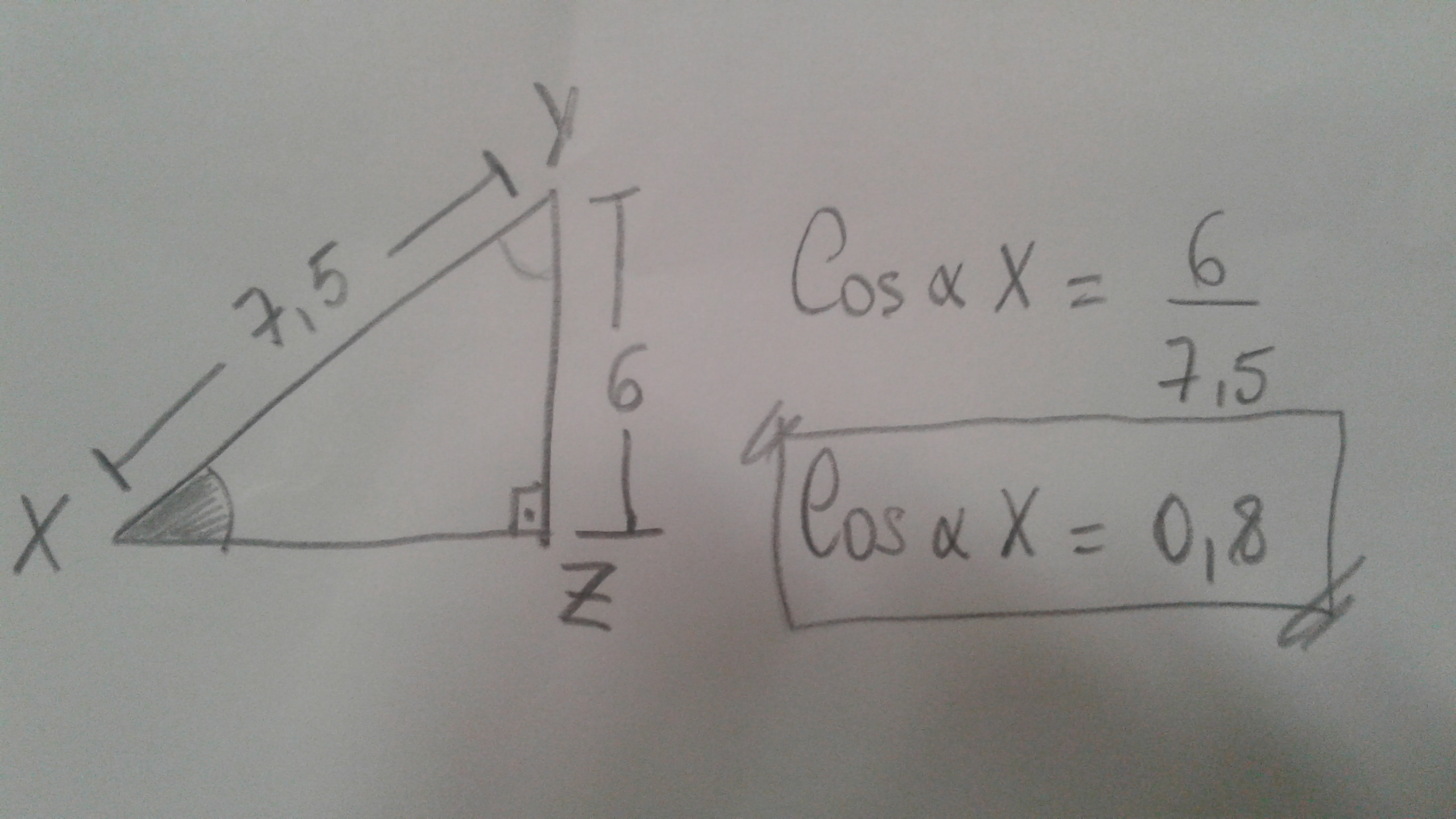 In Triangle Xyz What Is The Cosine Ratio Of Angle X Hypotenuse Is