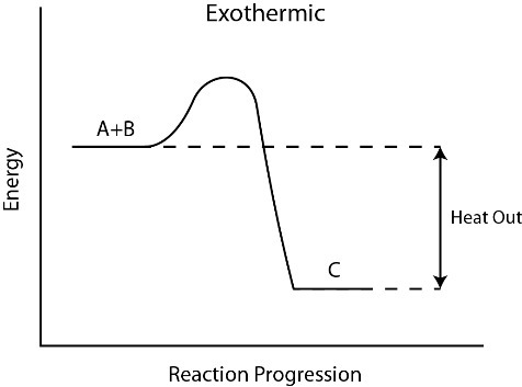 For An Exothermic Reaction What Would The Potential Energy Diagram