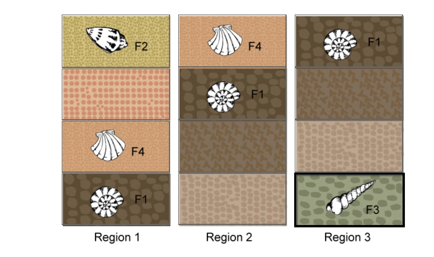 The image shows core samples of rock strata taken from three