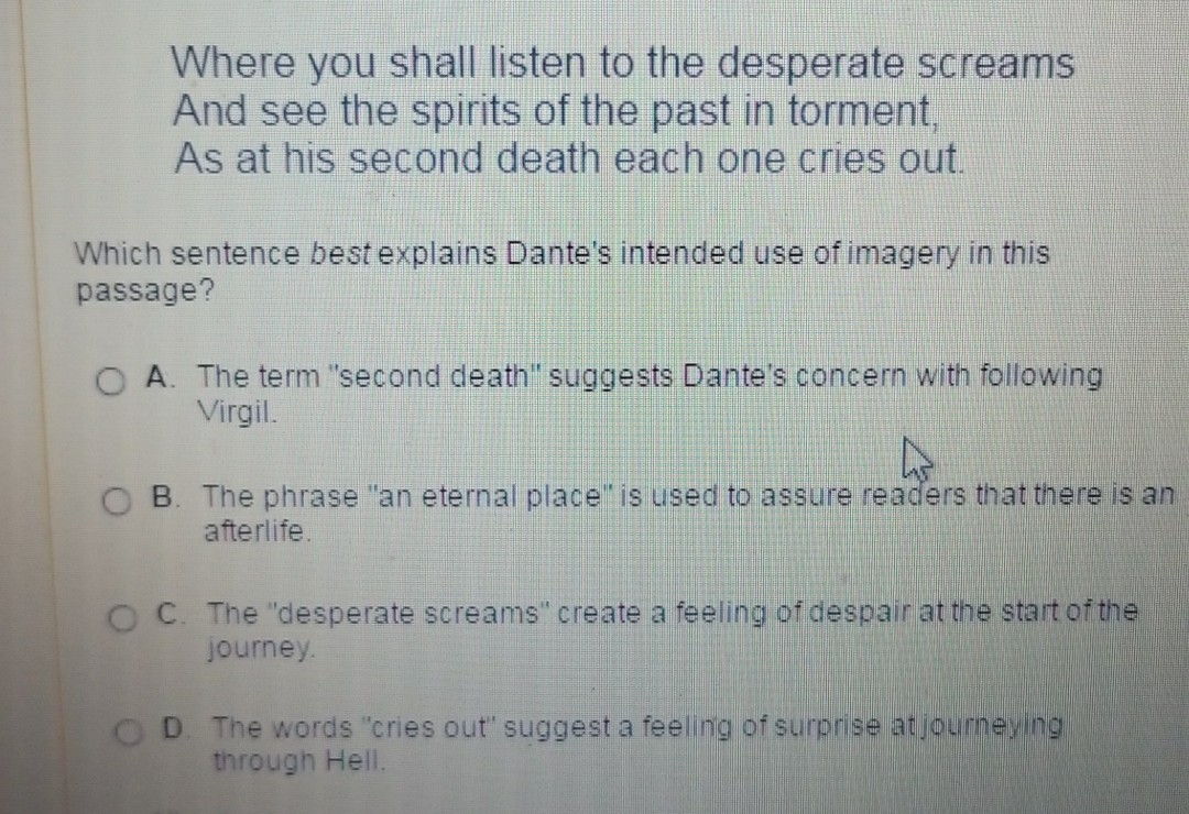 Which sentence best explains Dante's intended use of imagery