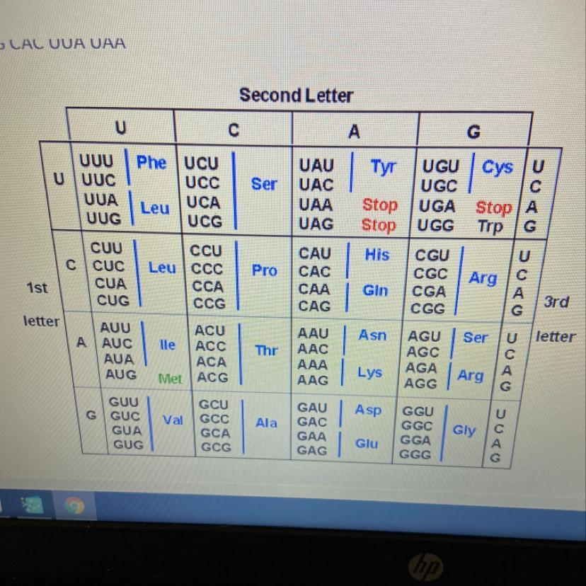 Using The Codon Chart Below Identify Correct Amino Acid Sequence Created During Translation For Brainly Com