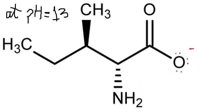 modify isoleucine  below  to show its structure at ph 1