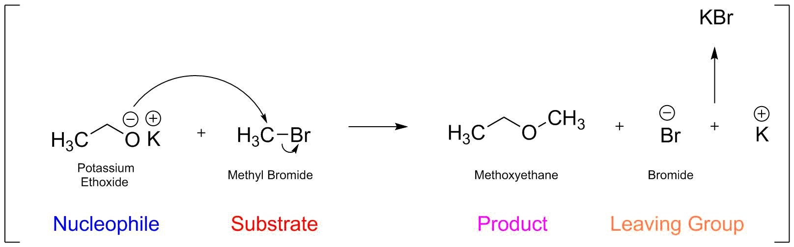 Write a structural formula for the principal organic ...