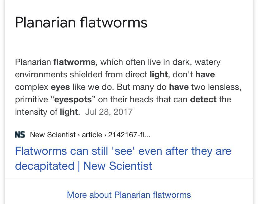 Which flatworm has eyespots that detect light? A ...