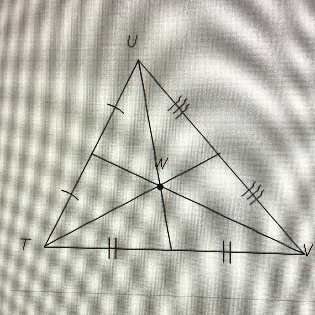 The Diagram Shows Tuv  Which Term Describes Point W  A