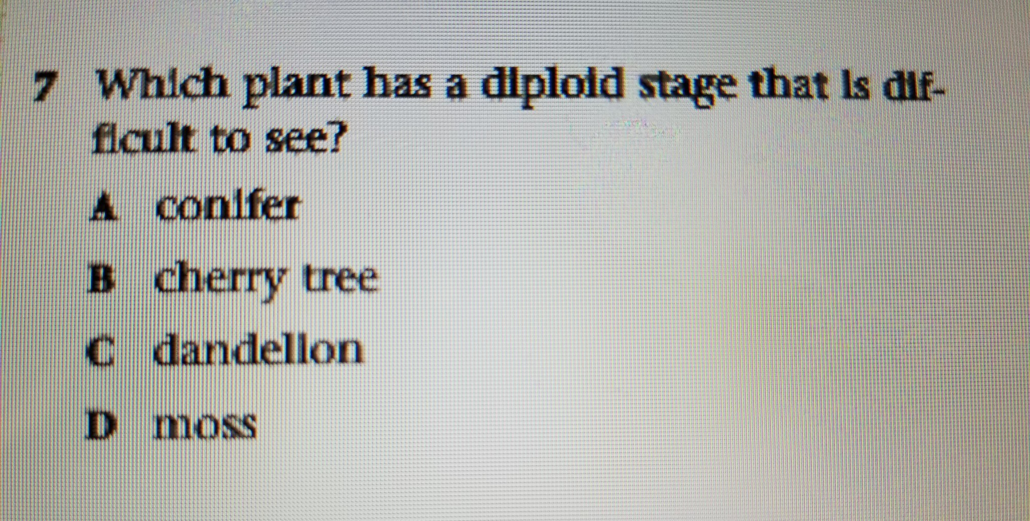 Which Plant Has A Diploid Stage That Is Difficult To See
