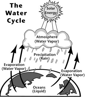 In the water cycle, water vapor evaporates into the atmosphere and ...