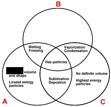 Which Could Complete The Liquid Phase Description In The Venn