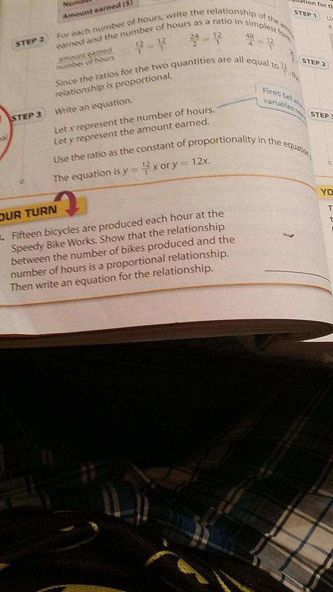 Help with my homework plz