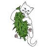 eatingdeadcats