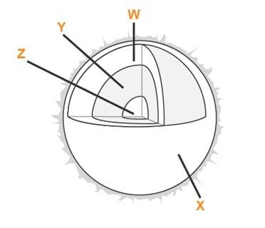 e448d881ace037c3c40df53c8870d81b below is a diagram of the sun bettina wants to place a circular