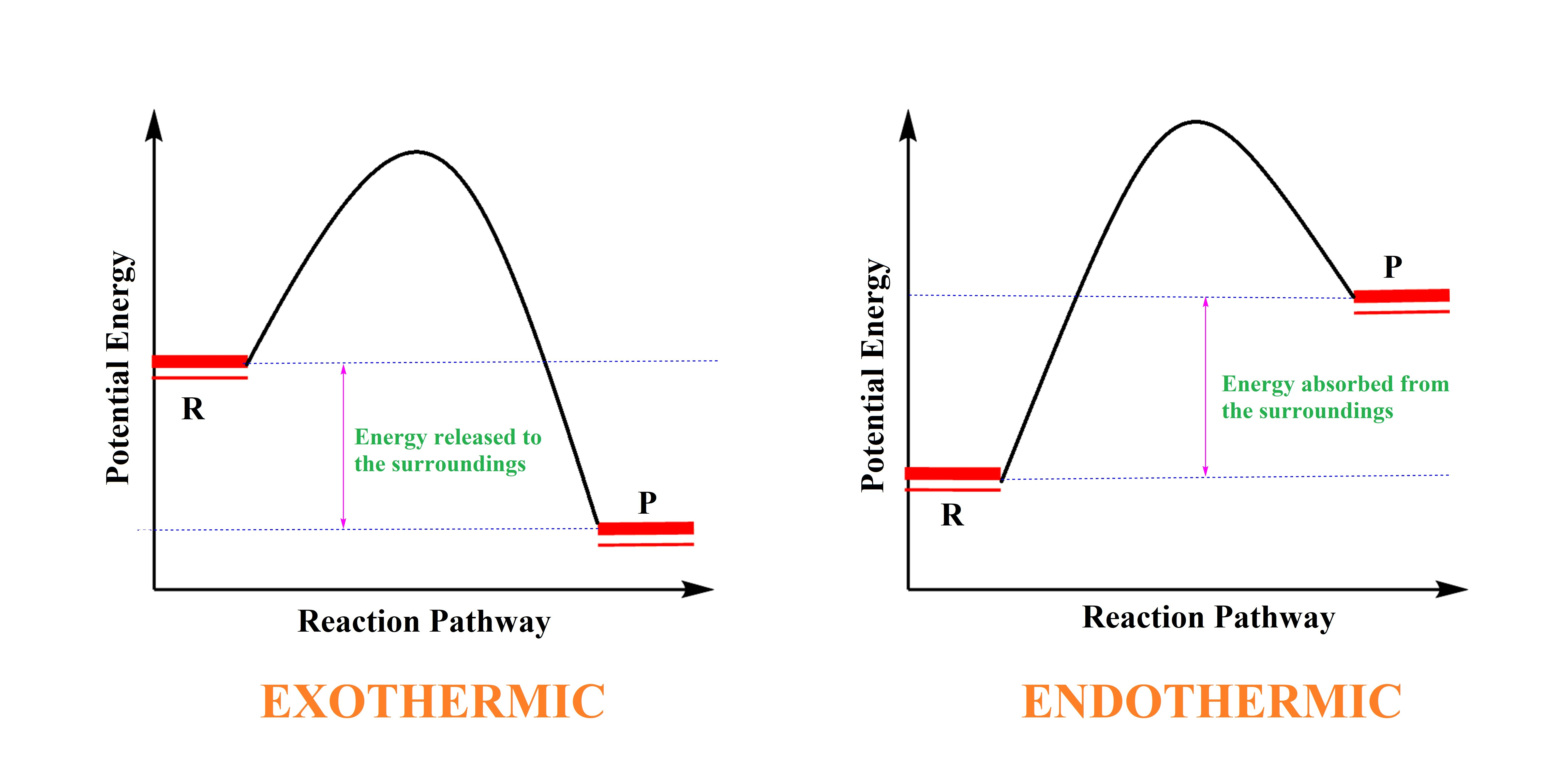 For an exothermic reaction what would the potential energy download png pooptronica Images
