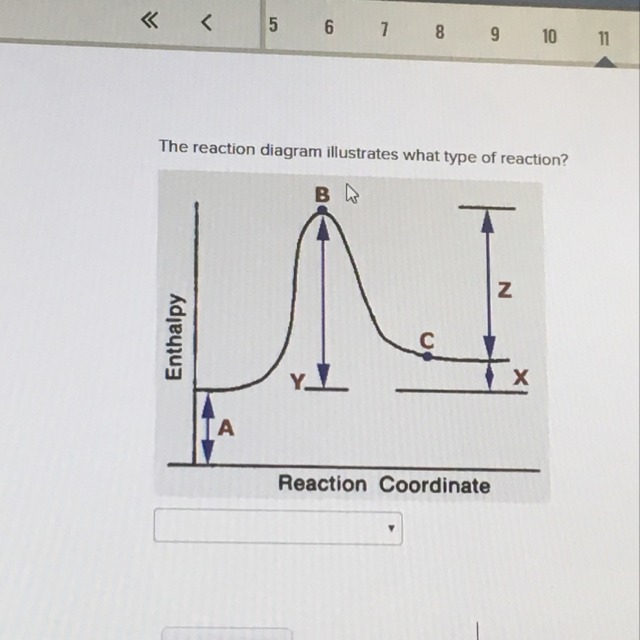 The Reaction Diagram Illustrates What Type Of Reaction A