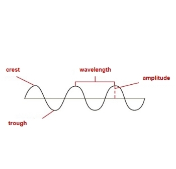 These images represent a    wave    Which    wave       diagram    is labeled correctly   Brainly