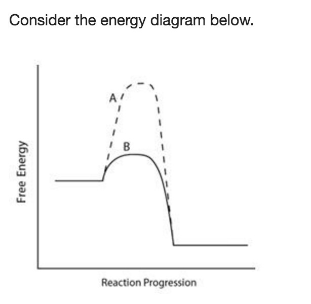 Consider The Energy Diagram Below Xn Mc012 1g Which Line