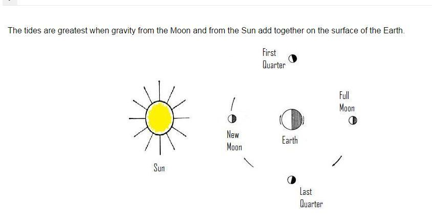 From The Above Diagram Which Phase Of The Moon Will Result In The