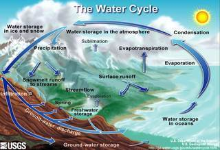 review the water cycle diagram below what effect would removing the Water Cycle Aquifer