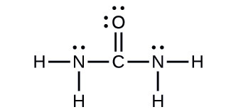 draw the lewis structure for urea h2nconh2 the compound primarily