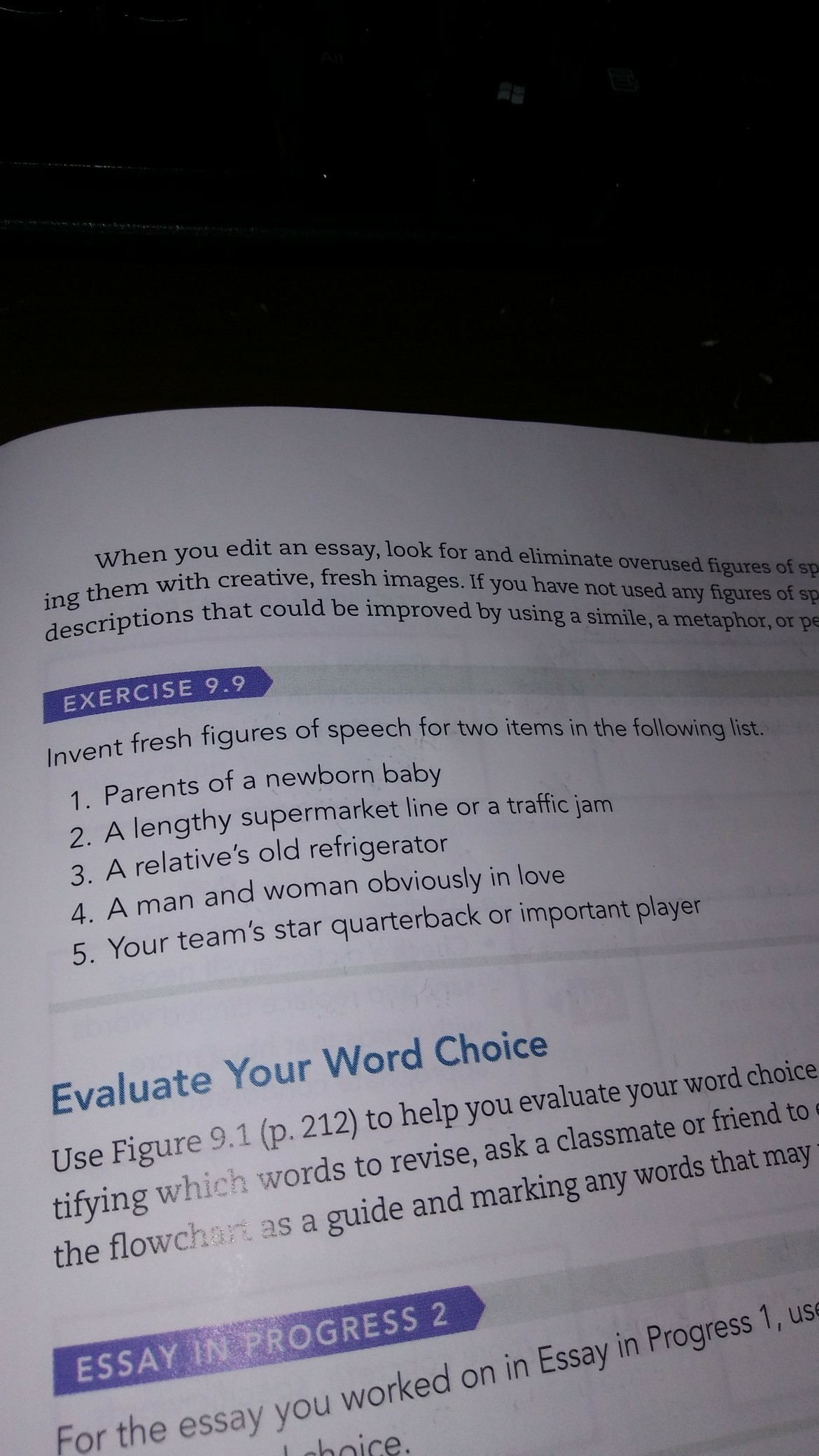 why is word choice important essay