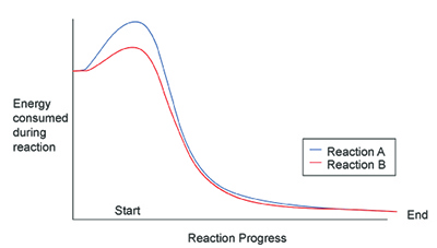 35 Points The Graph Above Shows The Progress Of An