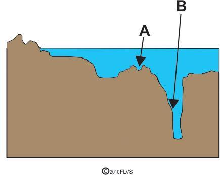 The diagram below shows some ocean