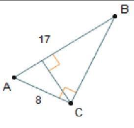 What is the length of Line segment B C? 9 units 11 units ...