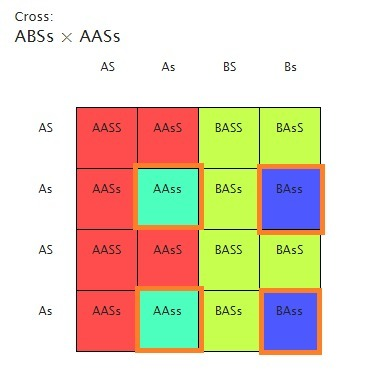 secretors genotypes ss and ss secrete their a and b blood group