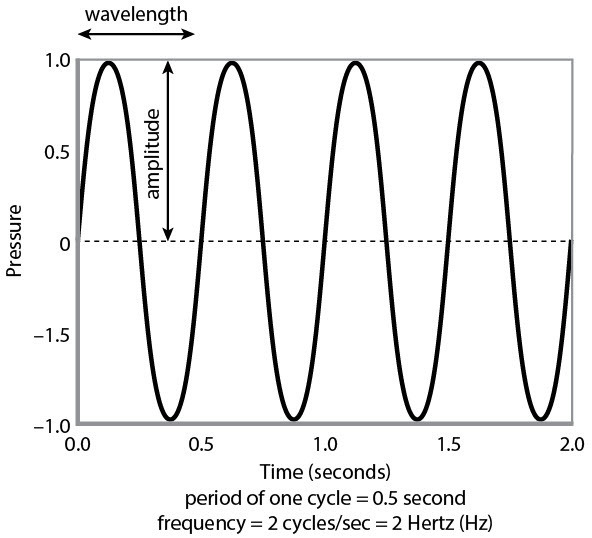 Observe The Following Diagram  If The Speed Of The Wave