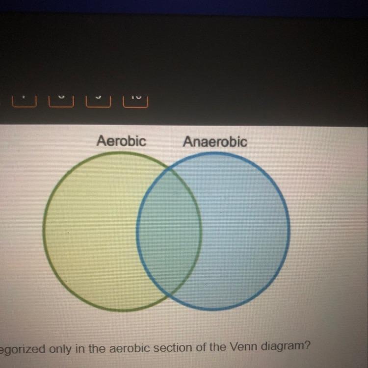 The Venn Diagram Compares Aerobic Respiration And Anaerobic