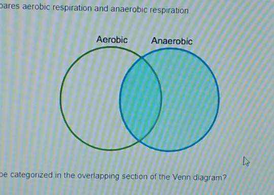 the venn diagram compares aerobic and anaerobic